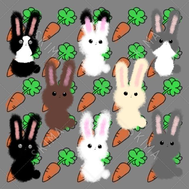 ゆる系ふわウサギ