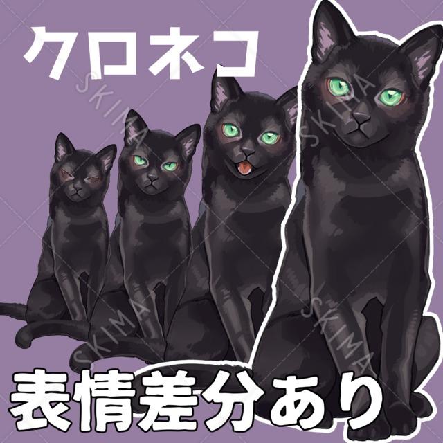 厚塗り系黒猫【表情差分あり】