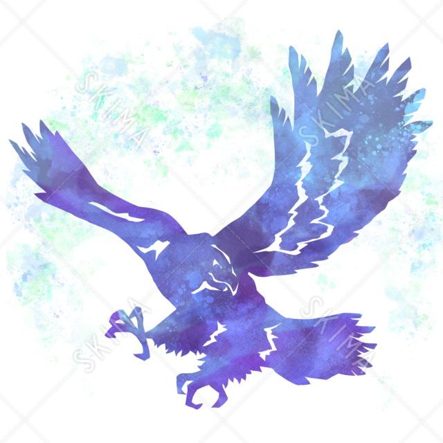 †アイコンシリーズ†空を飛ぶ鷲