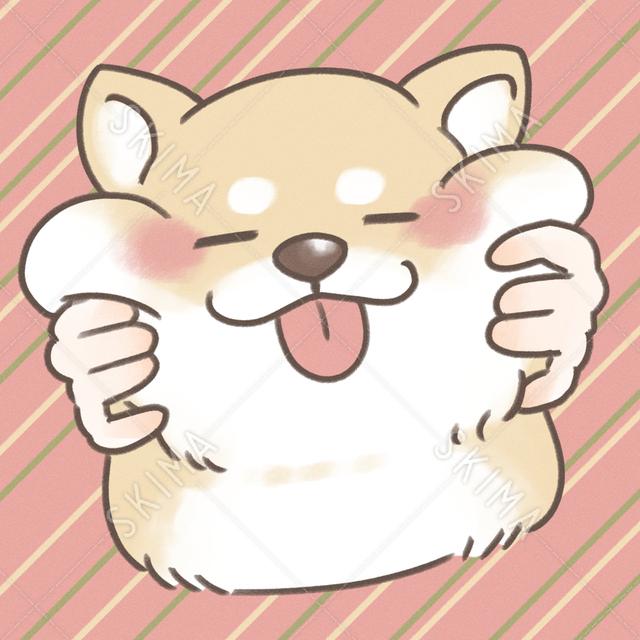 もちもち柴犬【アイコン】