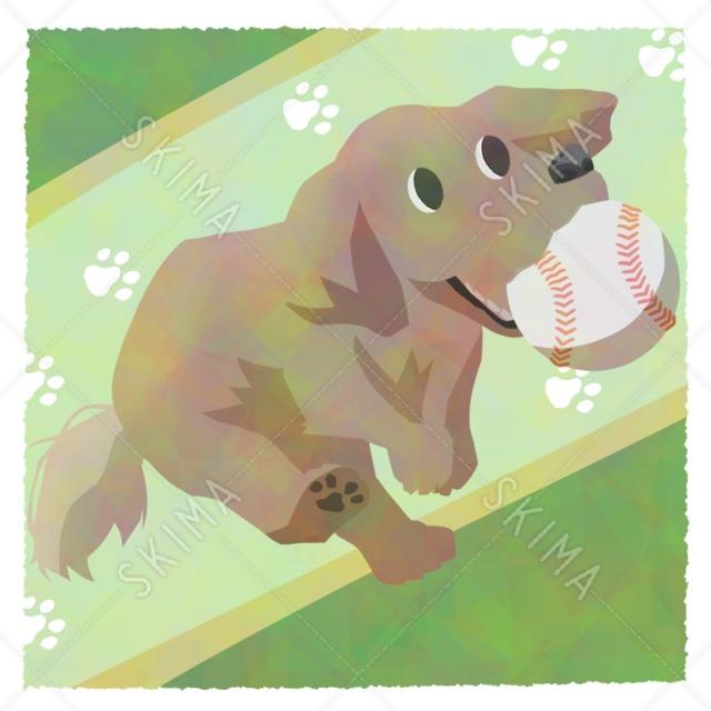 †アニマルシリーズ†野球ボールをくわえた犬