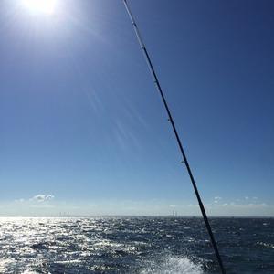釣りサポート