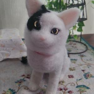 ペットちゃんそっくりドール(〜2色)