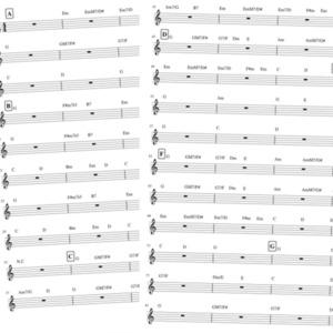楽曲のコード進行を採譜します!(2曲) ギター弾き語りをしたいなど