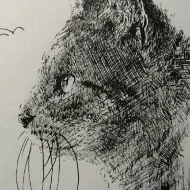 色鉛筆画ボールペン画 動物 スキマ スキルのオーダーメイド