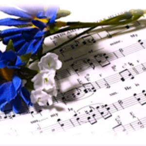 BGM制作を承ります。オーケストラアレンジの楽曲、BGMをお求めの方へ