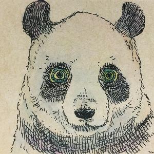 ペット、動物のイラスト
