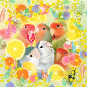ペット(鳥)のイラスト描きます ✩ダウンロードデータに♪