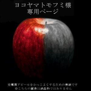 【ヨコヤマトモフミ様専用ページ】