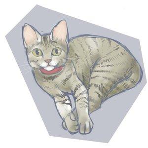 ネコさんのイラスト描きます。