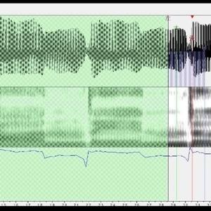 UTAU原音設定します