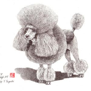 愛犬のペン画を作成します。(原画販売 アナログ)