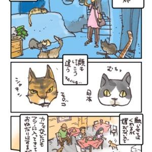 乙女すぎない^^レポート・PR漫画描きます☆