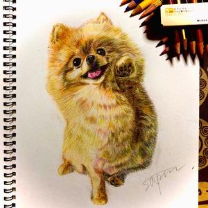 可愛い!思わず飾りたくなるペットの似顔絵描きます!