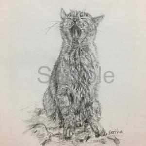 ペット(動物)のイラストを鉛筆でお描きします