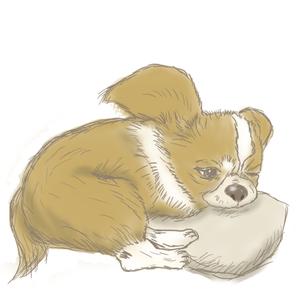 ペットのイラスト描きます!