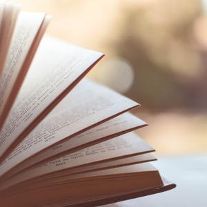 あなたの小説、脚本や漫画に感想をお届けします