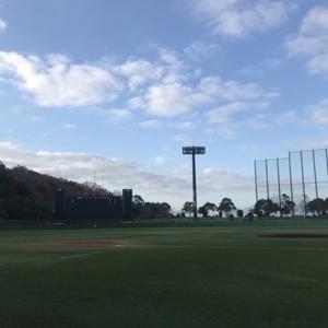 野球練習相手になります。