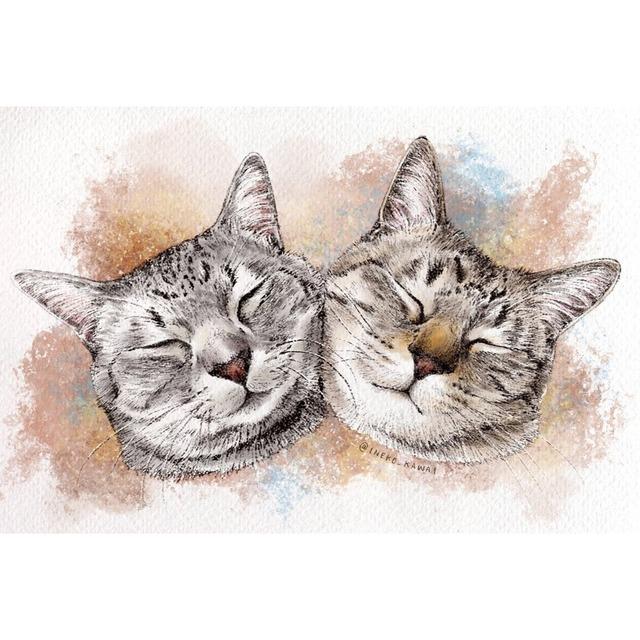 水彩スケッチ風の愛猫のイラスト描きます【顔のみ〜胸あたりまで】