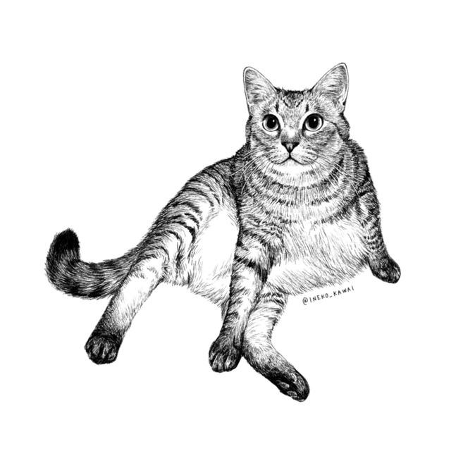 鉛筆画風の愛猫のイラスト描きます【半身〜全身】