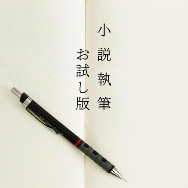 小説執筆致します〜お試し版〜