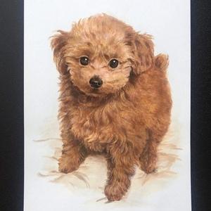 ペットの肖像画(原画販売、手描き)オーダーメイド アクリル画A 4size