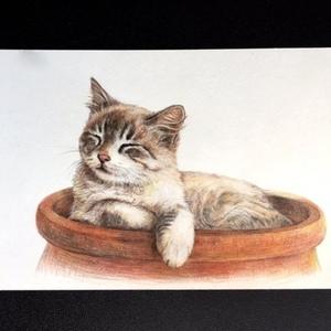 ペットの肖像画(原画販売、手描き)オーダーメイド 色鉛筆画2L判size