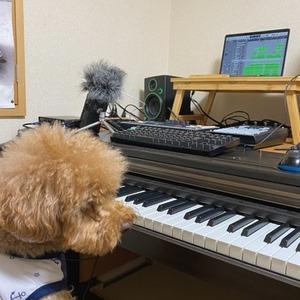 配信BGM等の楽曲を作ります。