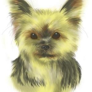 ペット似顔絵、動物画描きます